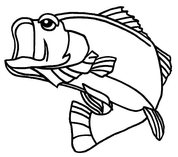 Bass Fish Georgia Largemouth Bass Fish Coloring Pages Fish