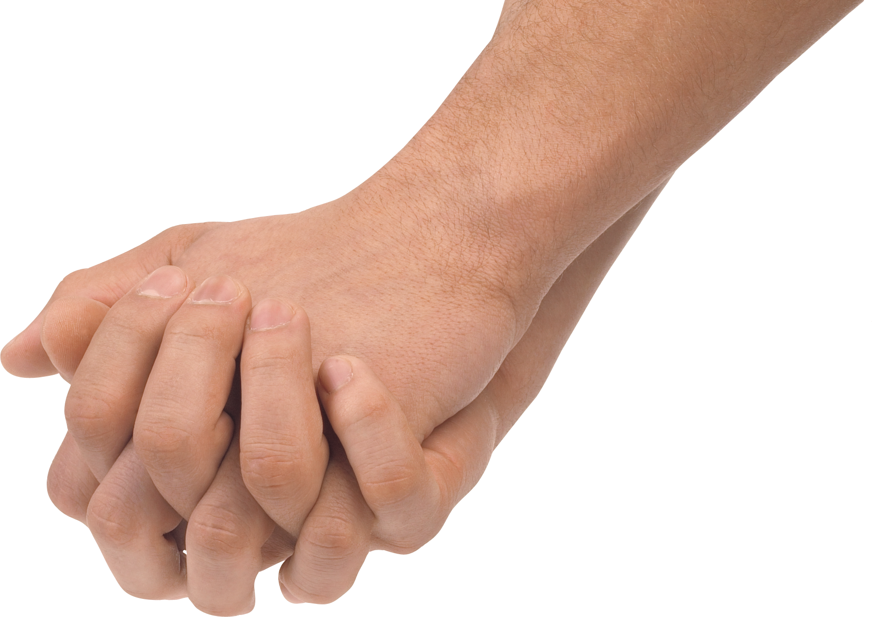 Hands Png Image Body Reference Hands Hand Images