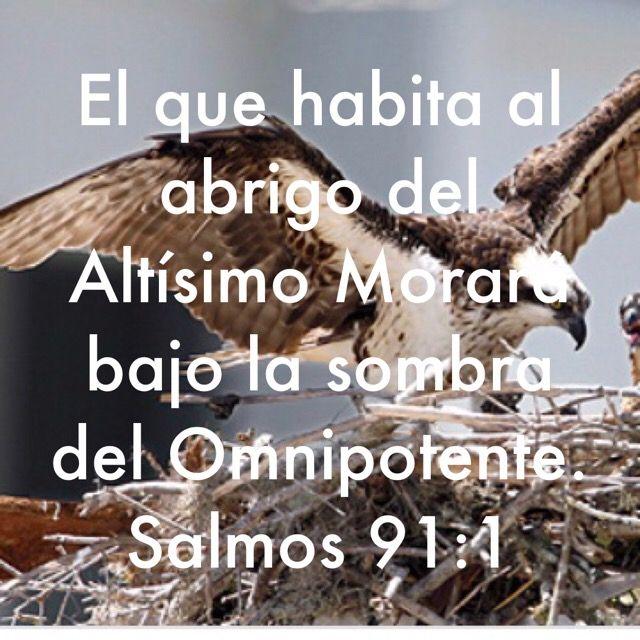 Versiculos De La Biblia De Animo: Pin De Monica Gonzalez En Frases