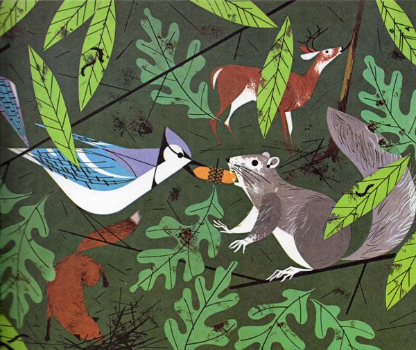 The Golden Book of Biology, illustrated by Charley Harper, via Present and Correct