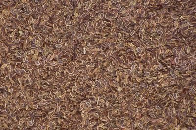 Types of Fiber in Prune Juice & Flax Seed | Health/Body Remedies | Flax seed benefits, Flaxseed ...