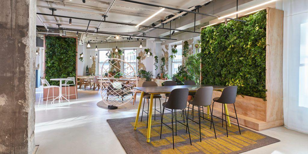 Wood Plant Room Divider