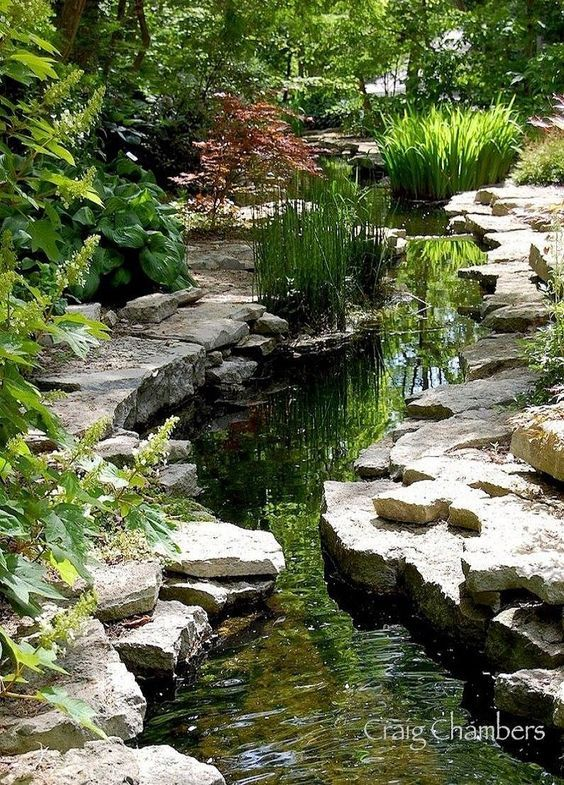 beautiful garden stream japanese