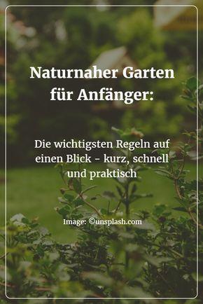 Naturnaher Garten für Anfänger Naturnaher garten, Garten anlegen - gemusegarten anlegen fur anfanger