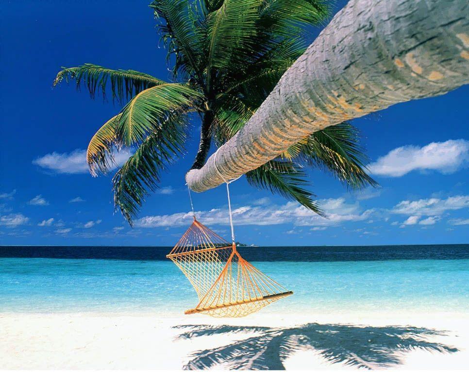 Gagner un voyage sur notre cashback concours www.consoplay.com966 × 768Buscar por imagen Marcher sur les plages de sable blanc, profiter du soleil, diner les pieds dans l'eau... Faîtes de ce rêve une réalité. Nous vous offrons un séjour tout inclus pour deux personnes sur bon+voyage+! - Buscar con Google