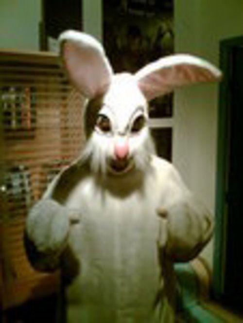35+ Evil rabbit information