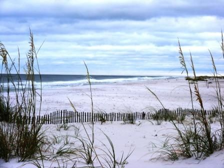 Sea oats, sand, and surf at Ft. Pickens on Pensacola Beach.
