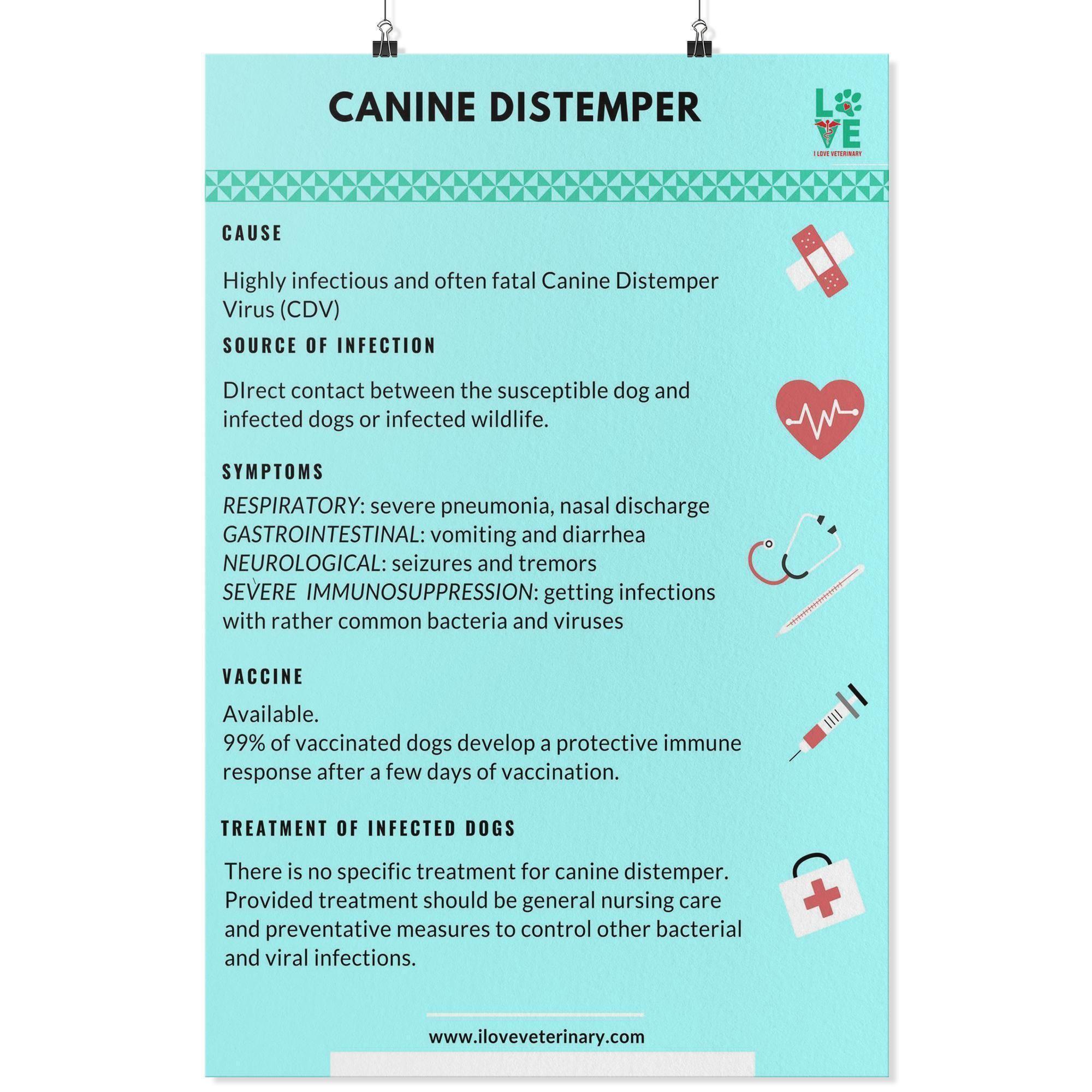 Canine distemper poster in 2020 vet medicine vet