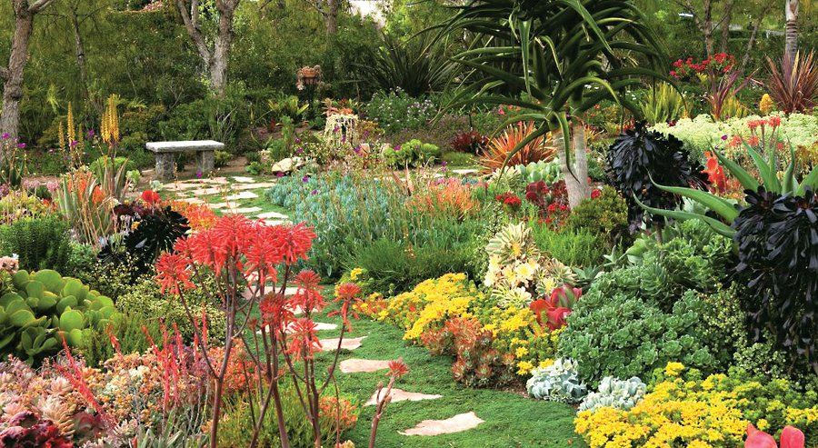 Captivating This Tapestry Succulent Garden Is On The San Diego Horticultural Society  Tour.