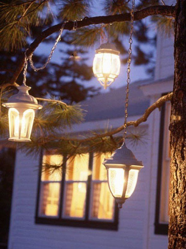 outdoor christmas lanterns in trees