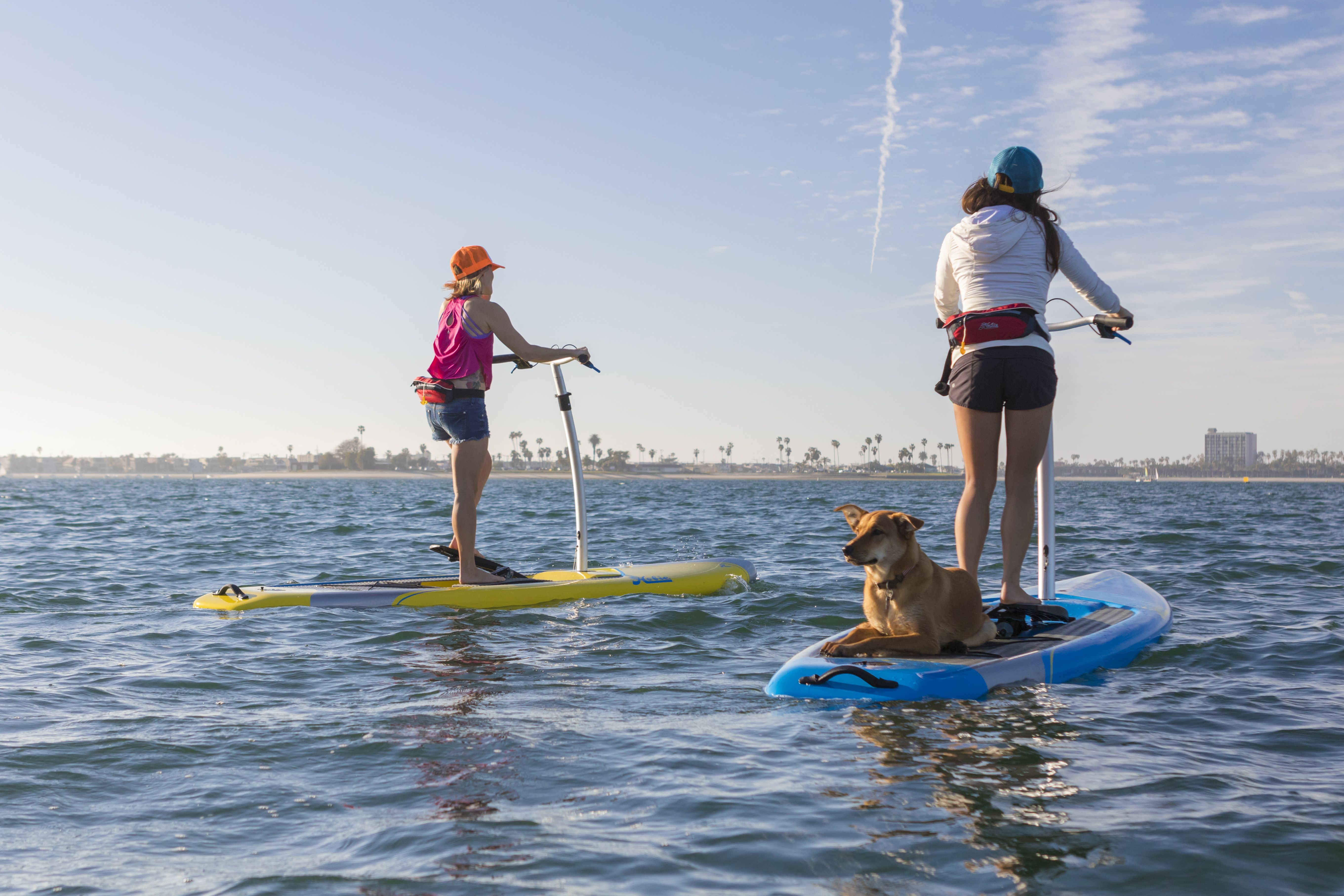 Take Your Dog On Your Sup Fitness Tour Paddle Boarding Hobie Mirage Best Stand Up