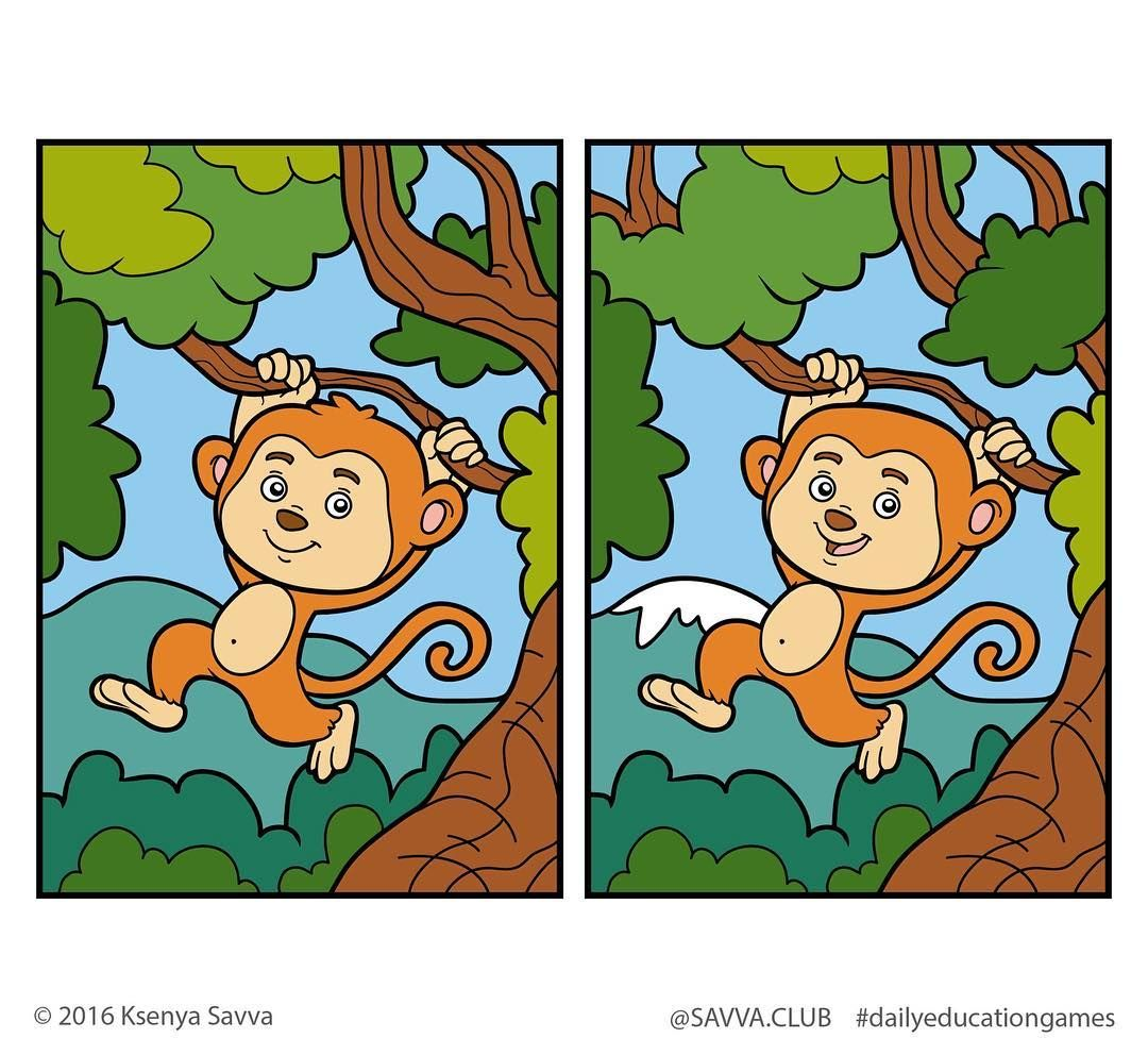 Savvaub Dailyeducationgames Day 6 Find 5 Differences 5