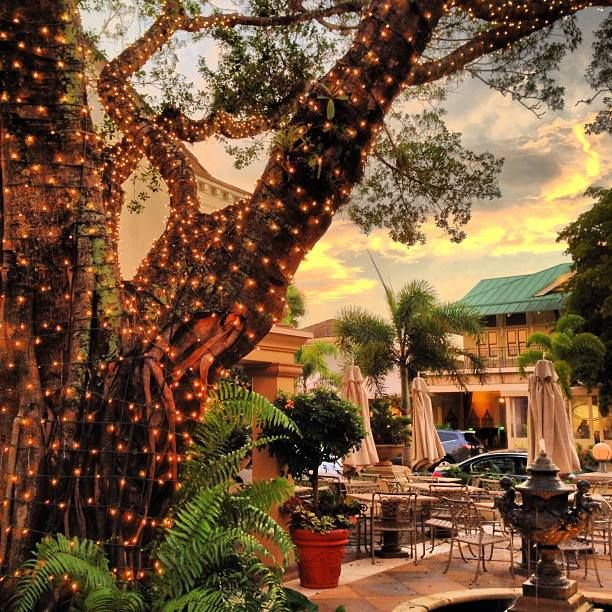 Campiello Ristorante Scott Pearson Naples Fl Gulf Coast International Properties Naples Florida Beaches Naples Restaurants Florida Restaurants
