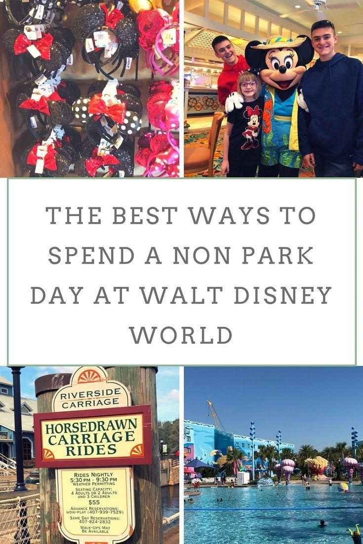 5 Non-Park Experiences at Walt Disney World for Families   Travel ...