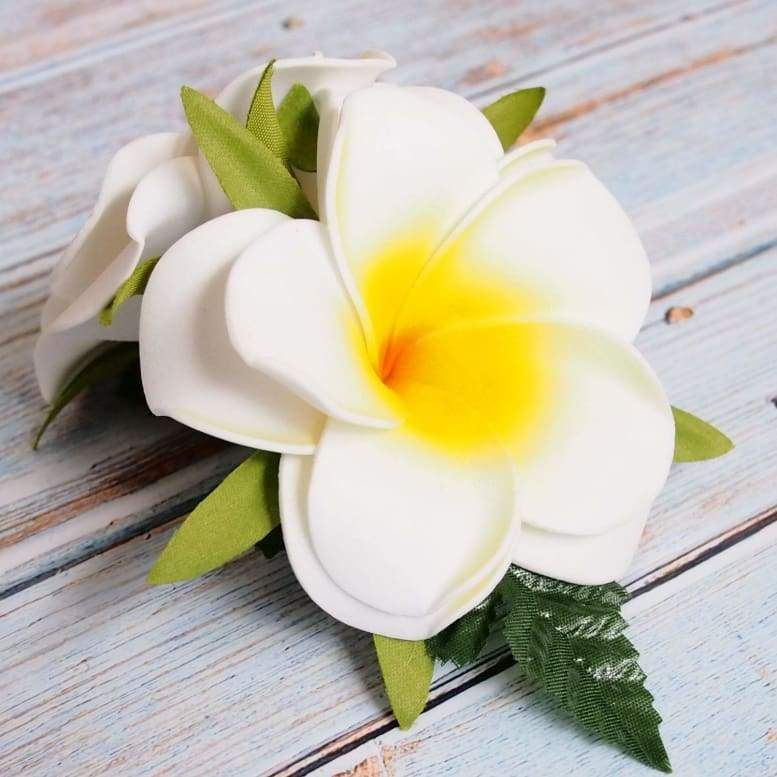 Double Joy Plumeria Hawaiian Flower Hair Clip In 2020 Hawaiian Flower Hair Flowers In Hair Flower Hair Clips