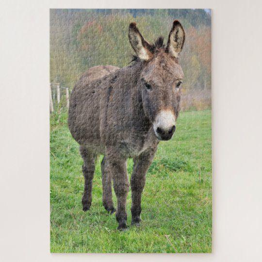 Donkey Farm Animal In Green Pasture Nature Jigsaw Puzzle #donkey #farm #animals #animal #pet #farmlife #outdoors #jigsaw #puzzle #jigsawpuzzle #gifts #fun #stockingstuffers #games #nature #stockingstuffers #secretsanta #gift #christmas #holidays #birthday