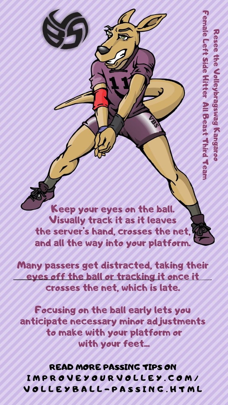 A Volleyball Passing Guide On How To Improve Volleyball Bumping Skills Volleyball Passing Drills Volleyball Training Volleyball Practice