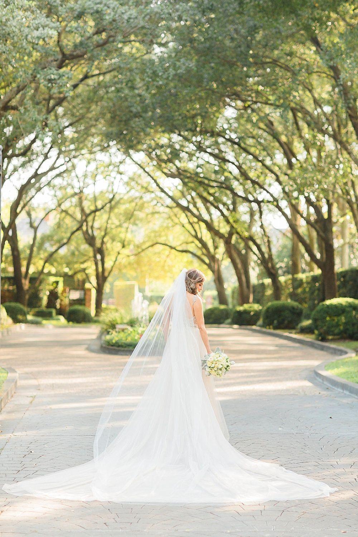 River Oaks Wedding Photographer Bridal Portraits Outdoor Bridal Portraits Wedding Photography