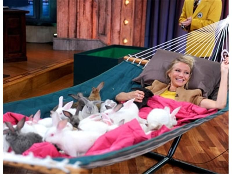 Medium image of cameron diaz with tons of bunnies in a hammock  her record has been broken