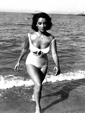 Soudain l'ete dernier SUDDENLY, LAST SUMMER, 1959 by JOSEPH L. MANKIEWICZ with Elizabeth Taylor (b/ Photo by | Art.com