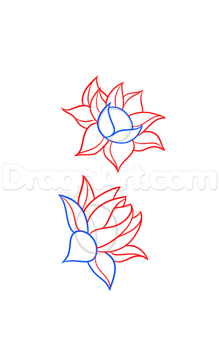 How to Draw a Lotus Flower Tattoo, Step by Step, Tattoos