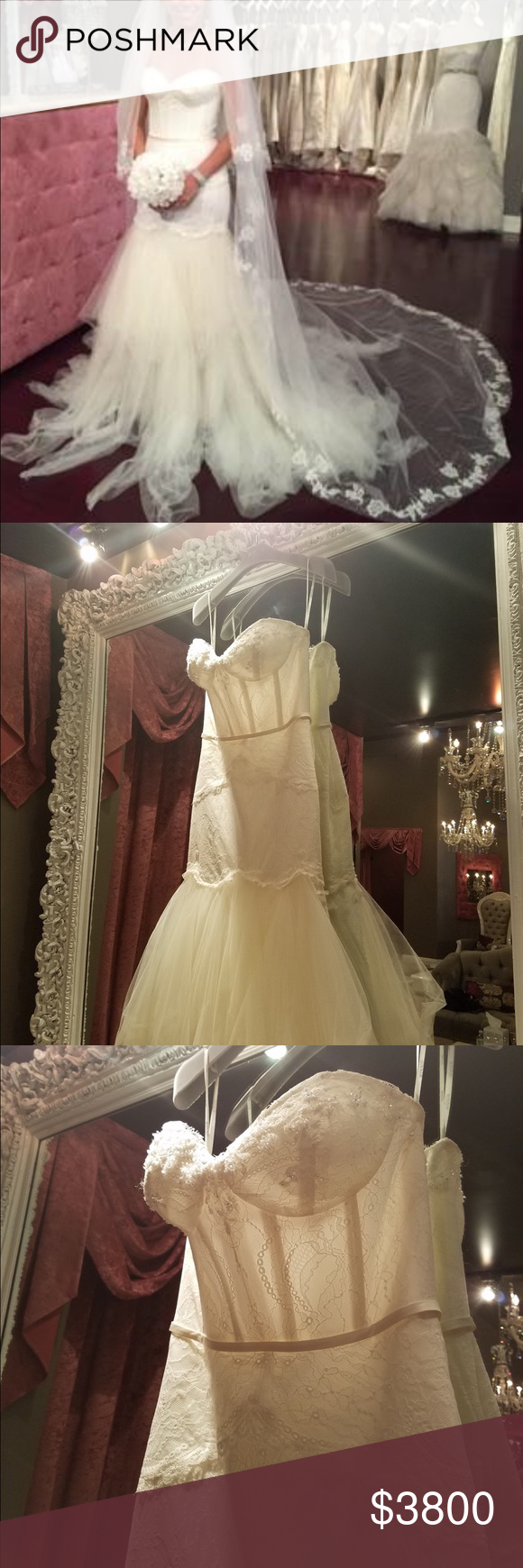 My never been worn wedding dress, veil for sale NWT | Winnie couture ...