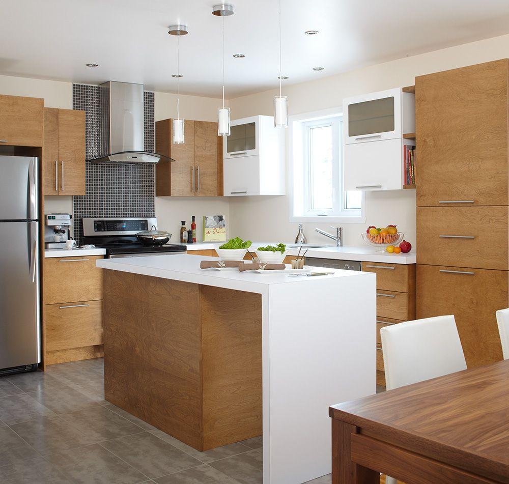 Lot et armoires de cuisine deux tons en merisier teint de - Cuisine schmidt merignac ...