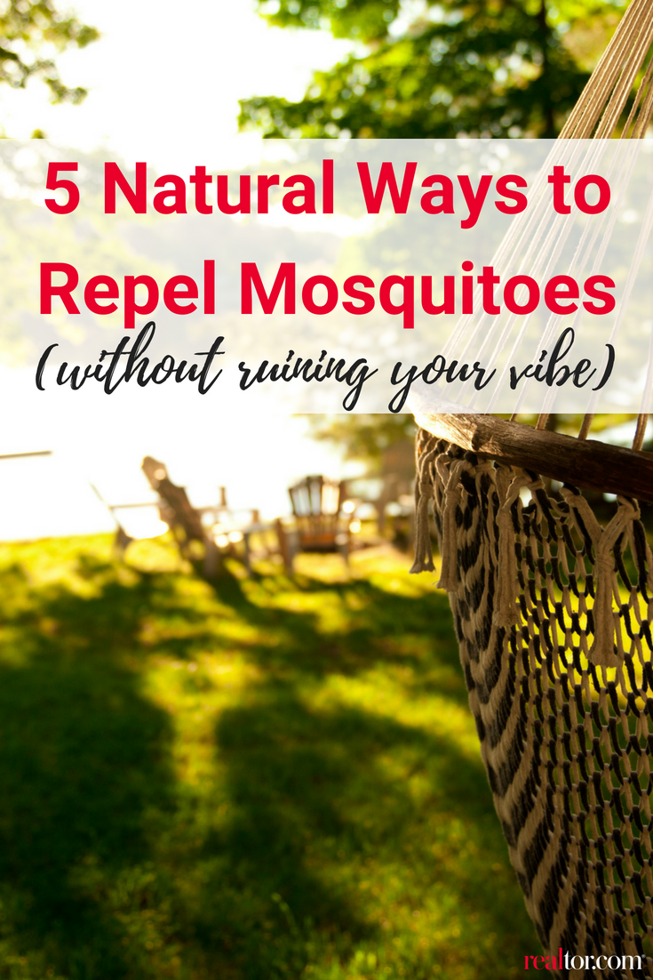 How to Get Rid of Mosquitoes, in 5 Clever Ways   Natural ...