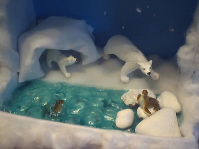 Image result for projects for tundra