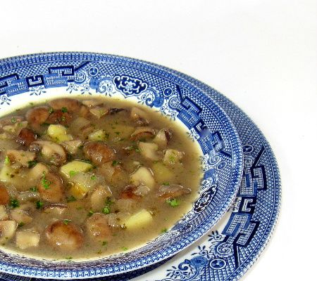 A light mushroom soup   could also be vegan using soy sour cream.