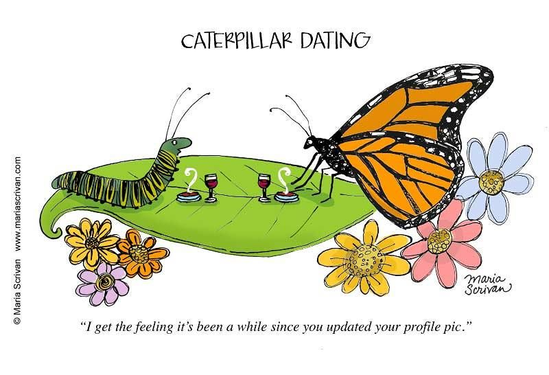 monarch dating At monarch wellness & psychotherapy, you will be matched with one of our competent,  please join us at our saturday workshop on dating and relationships.