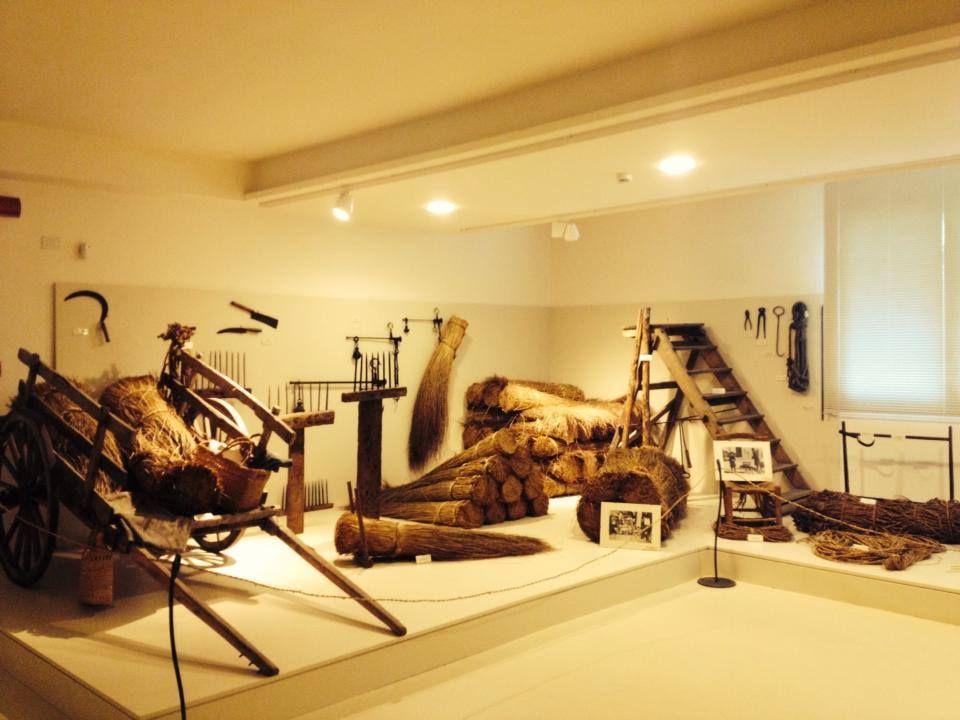 Ecomuseo della Erbe Palustri, interni