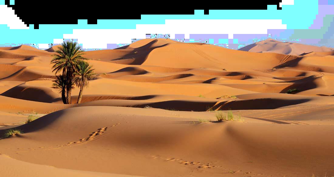 Desert Png Image Desert Transparent Free Download Sahara Desert Sahara Fun Deserts