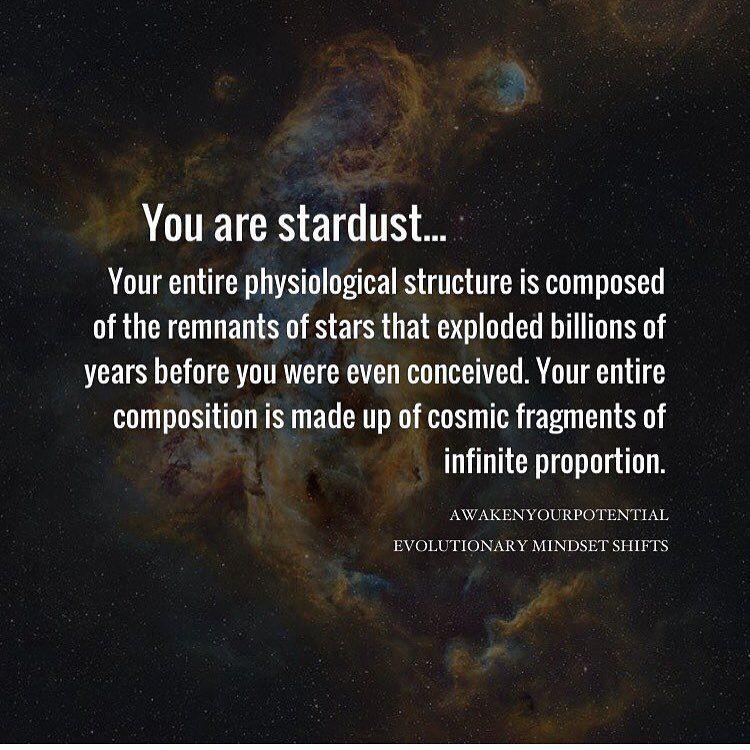 Stardust Quotes 6