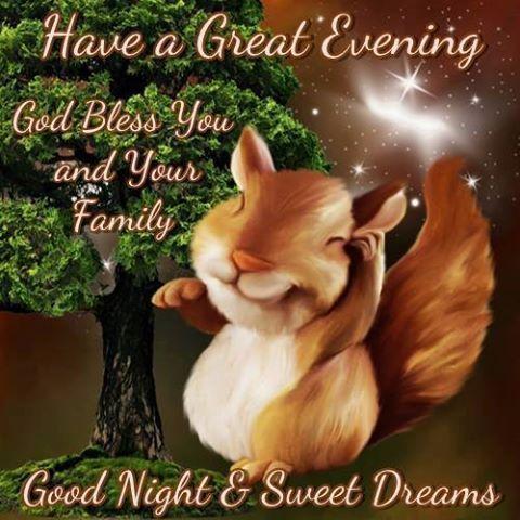good morning good evening and goodnight