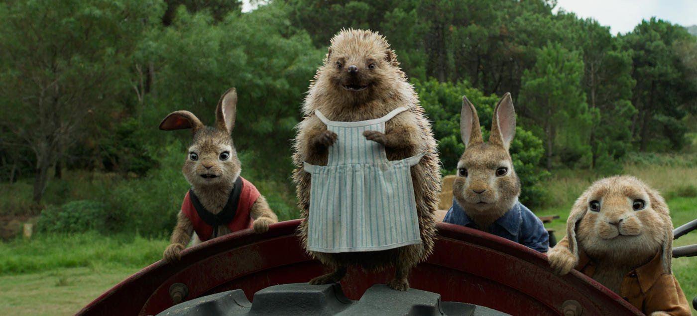 Peter Rabbit 008 Jpg 1 400 635ピクセル ピーターラビット 映画 映画