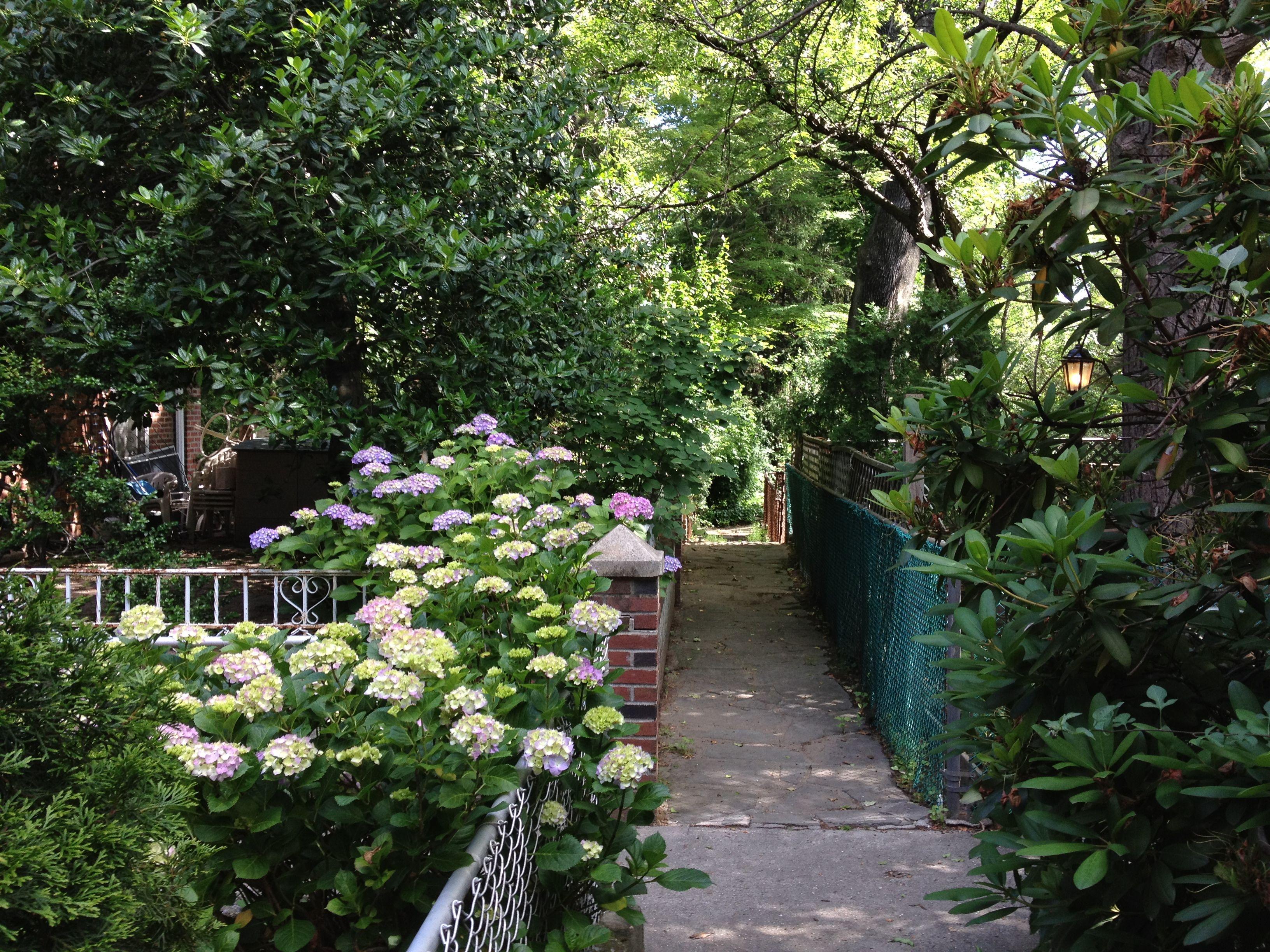 adventuresindaddyduty.files.wordpress.com 2012 06 sunnyside-gardens-alley-intersection.jpg
