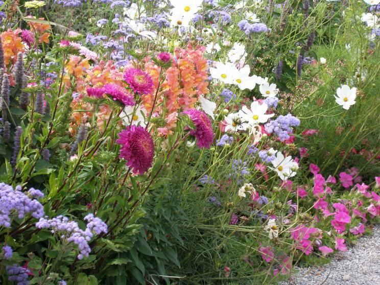 Bauerngarten Anlegen, Gestalten und Bepflanzen Garten, Gardens - pflegeleichter garten anlegen