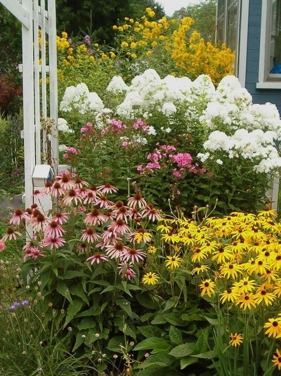 Perennial flower bed design perennial flower bed designs - Perennial flower bed design plans ...