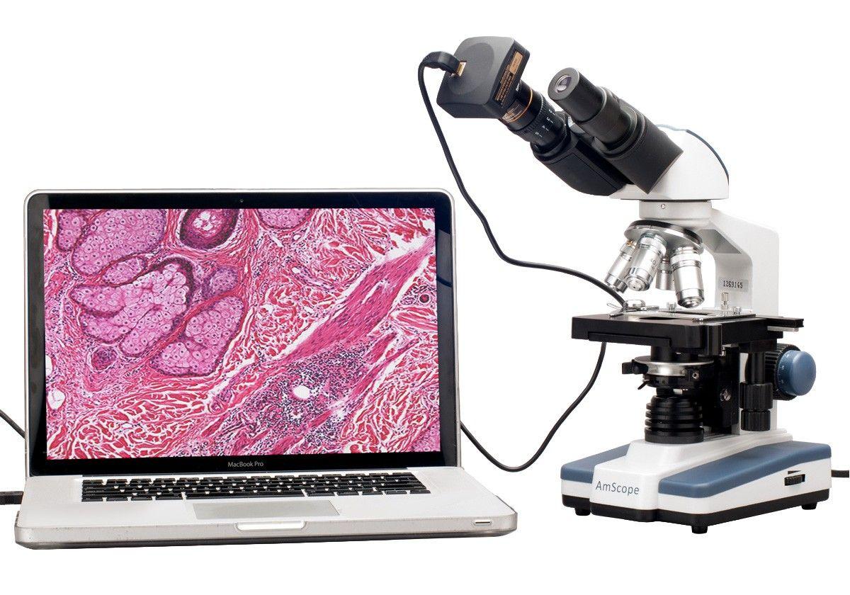 40X-2000X LED Digital Binocular Compound Microscope with 3D Stage USB Camera