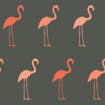 berlintapete wallpaper on demand designtapete trends timeless flamingo designmuster nr. Black Bedroom Furniture Sets. Home Design Ideas