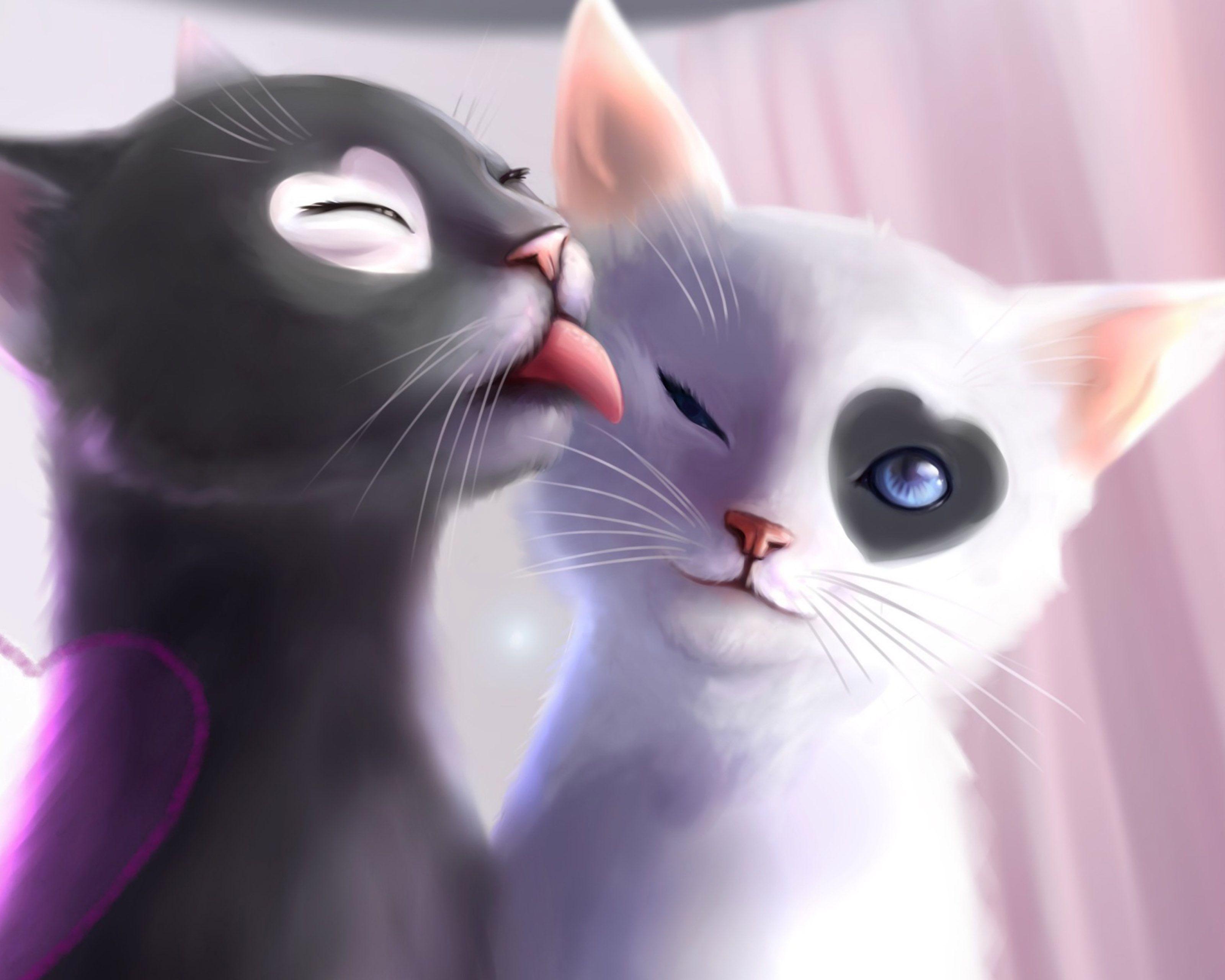 Romantic Ipad Wallpaper: Black And White Cats Romance