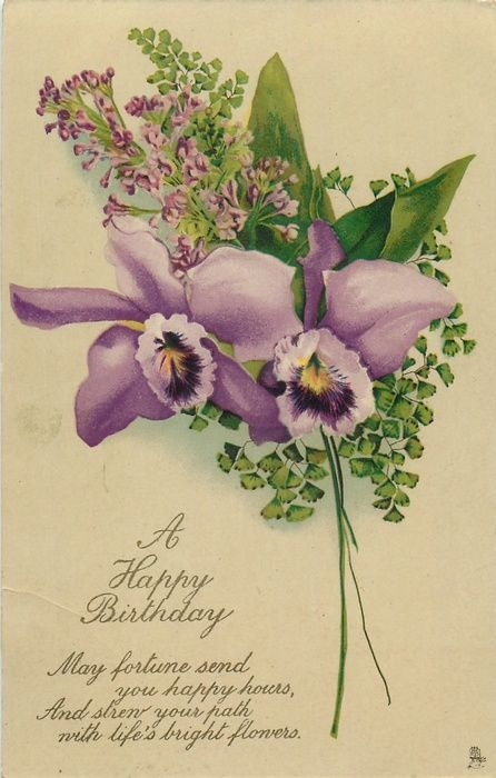 A Happy Birthday 2 Orchids Lilac Cvety Otkrytki Orhidei