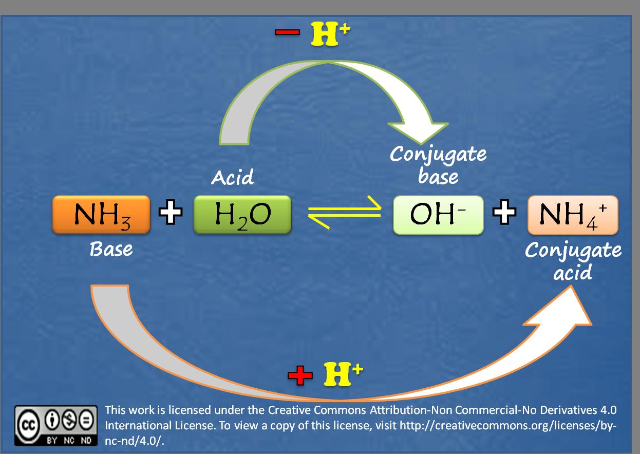 Conjugate Acid Base Pair