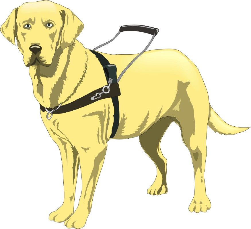 seeing eye dog coloring pages - photo#15