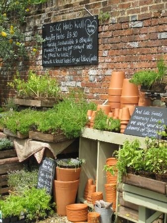 Nice Mix Of Herbs And The Materials You Need To Pot Them Garden