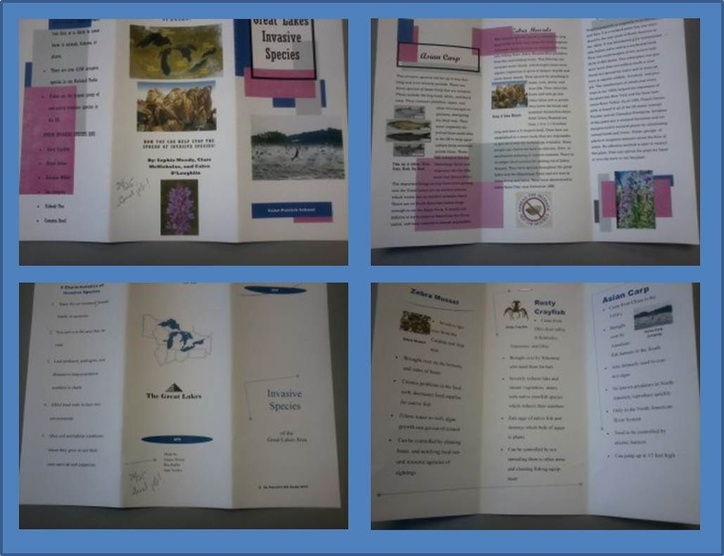 Invasive species brochures designed by 8th grade students