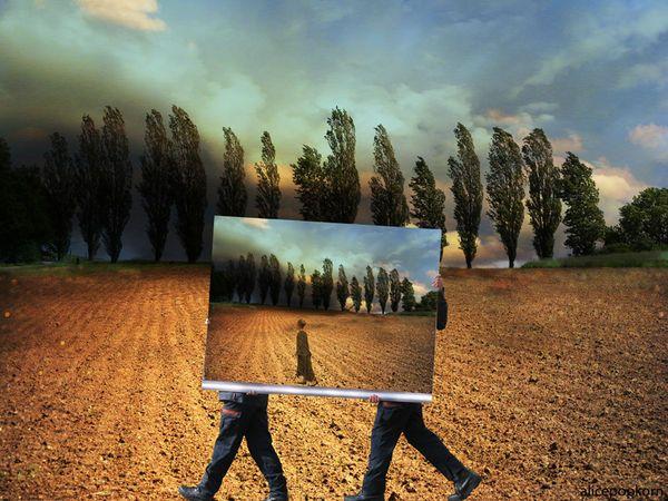 Tag 457 - Das Bewusstseinssystem als Interpretationsmechanismus der Realität