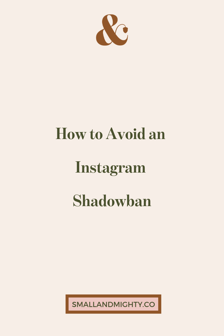 How to Avoid an Instagram Shadowban   IN-THE-CO   Business Advice