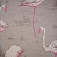 walnut wallpaper - i have an obsession with flamingo wallpaper